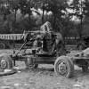 Die Deutschen im Zweiten Weltkrieg: Die Nazipropaganda verherrlicht den Heldentod