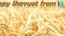 """Ein frohes Shavuot """"Chag Sameach"""" und Frohe Pfingsten aus Israel"""