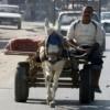 """Weltbank: Gaza-Wirtschaft im """"freien Fall"""""""