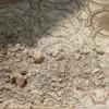 Araber zerstörten altes Mosaik in einer Kirche