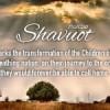 Milch und Honig: Am Schawuot feiern wir das Land Israel
