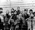 Jeder fünfte Deutsche glaubt dass der Holocaust zu viel Beachtung findet