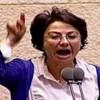 Arabisch-israelische Abgeordnete: Der Staat Israel sollte aufgelöst werden