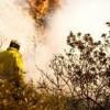 Hamas neue Taktik: Verbrennen israelischer Weizenfelder