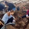 Freiwillige für Israel startet ab diesem Herbst ein neues Programm