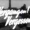 Was die Deutschen nach Ende des Zweiten Weltkrieges über den Nationalsozialismus und Hitler dachten III. Teil