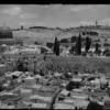 Vortrag: Die Heiligkeit Jerusalems im Spiegel seiner Architektur