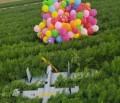 Hamas und Ägypten in Kontakt um Ballonangriffe gegen Israel zu stoppen